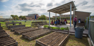 UTRGV Community Garden (UTRGV Photo by Silver Salas)