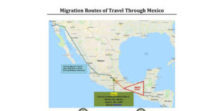 The above image represents one possible route the caravan formed on October 13 in Honduras (approximately 6,000 members) may follow. This caravan is currently located in Mexico City.
