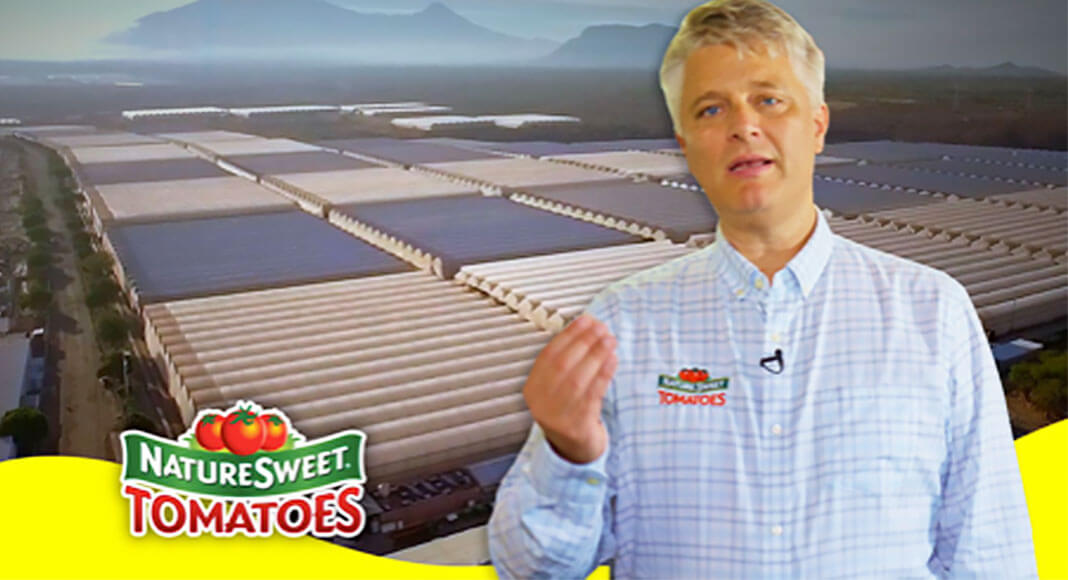 NatureSweet, the largest vertically integrated protected agriculture company in North America, bets on continuing rapid growth. Image Source: YouTube